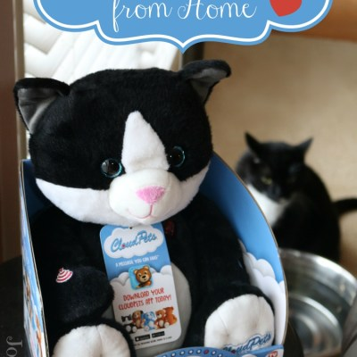 A Huggable Message from Home