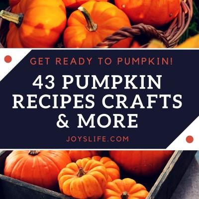 43 Pumpkin Recipes, Crafts & More