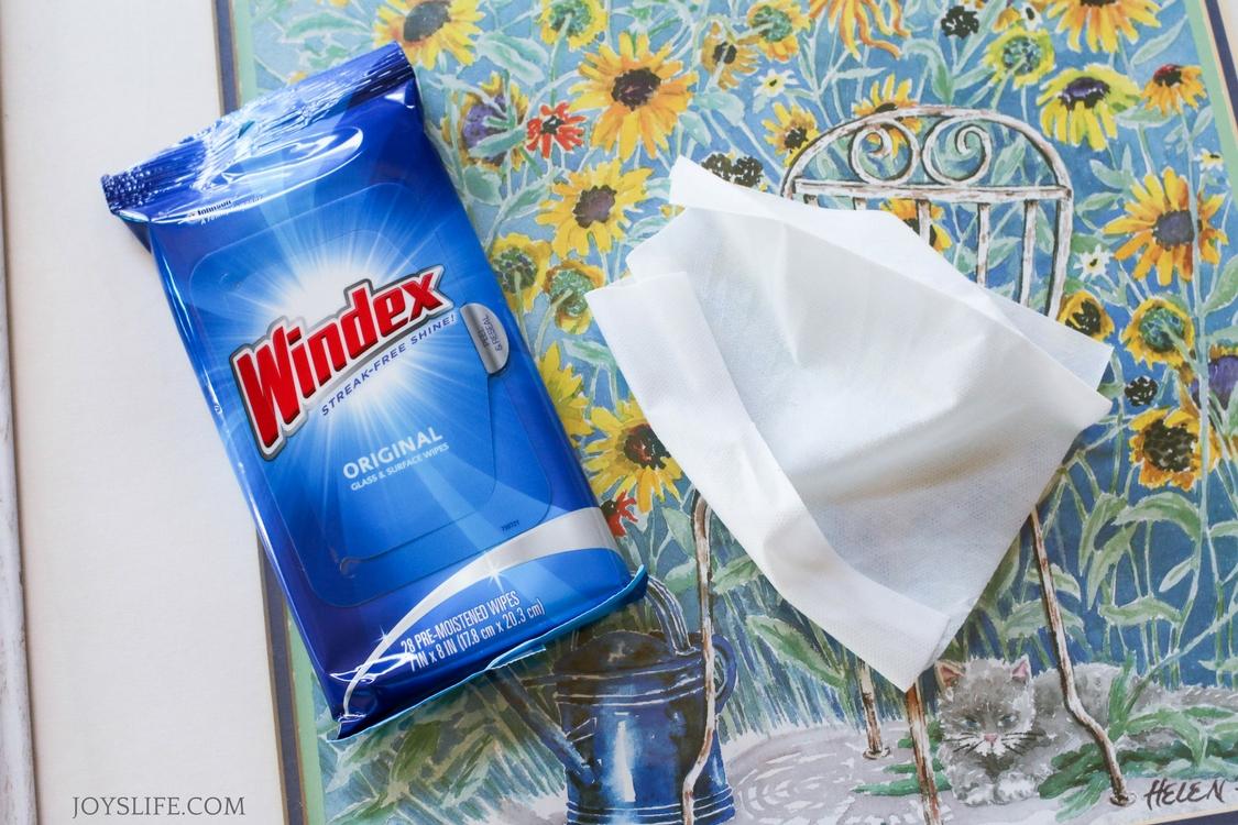 Windex wipes sunflower