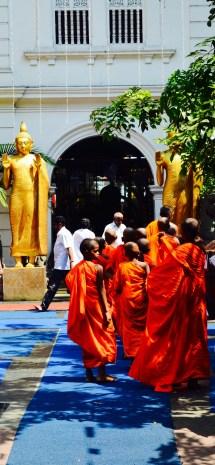 Volunteer Sri Lanka Project Buddhist Year And Vesak