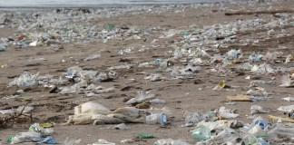 해변 플라스틱 쓰레기