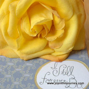 yellow rose with anniversary card