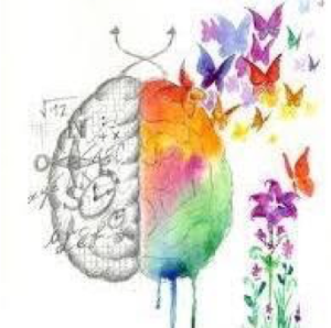 a drawing of two sides of the brain: logical and creative