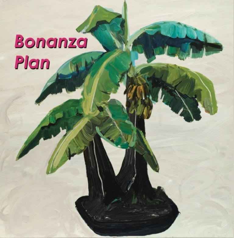 Barringtone Bonanza Plan