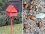Red Post Box and Acorns
