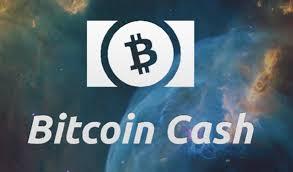 Blockchain walletでBitcoinCash(BCH)を分離する方法について