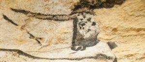 Grotte de Lascaux IV