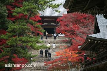 京都 神護寺の紅葉
