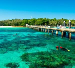batch 10.22Australia Cairns Ashutterstock 486921370