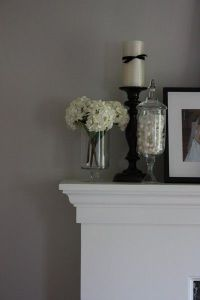 benjamin moore - silver fox / For the home - Juxtapost