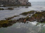 15_JPC_Western-Isles_archives_65