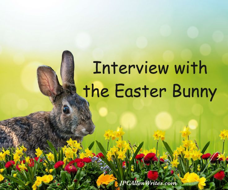 rabbitw-3249427_1280