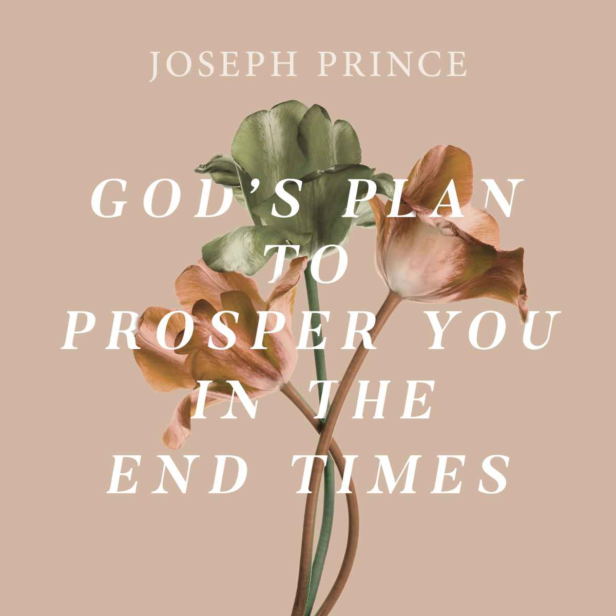 God's Plan To Prosper You In The End Times
