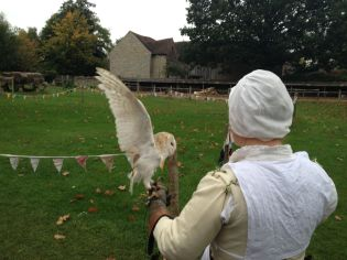 After lunch, a falconry show. This white owl, named Ellie, would have been used as a night guide with her perfect night vision. I smuggled her back to my dorm room in Oxford - she's a hoot.
