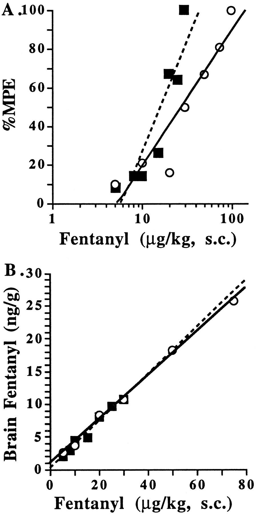 Characterization of Neonatal Rat Fentanyl Tolerance and