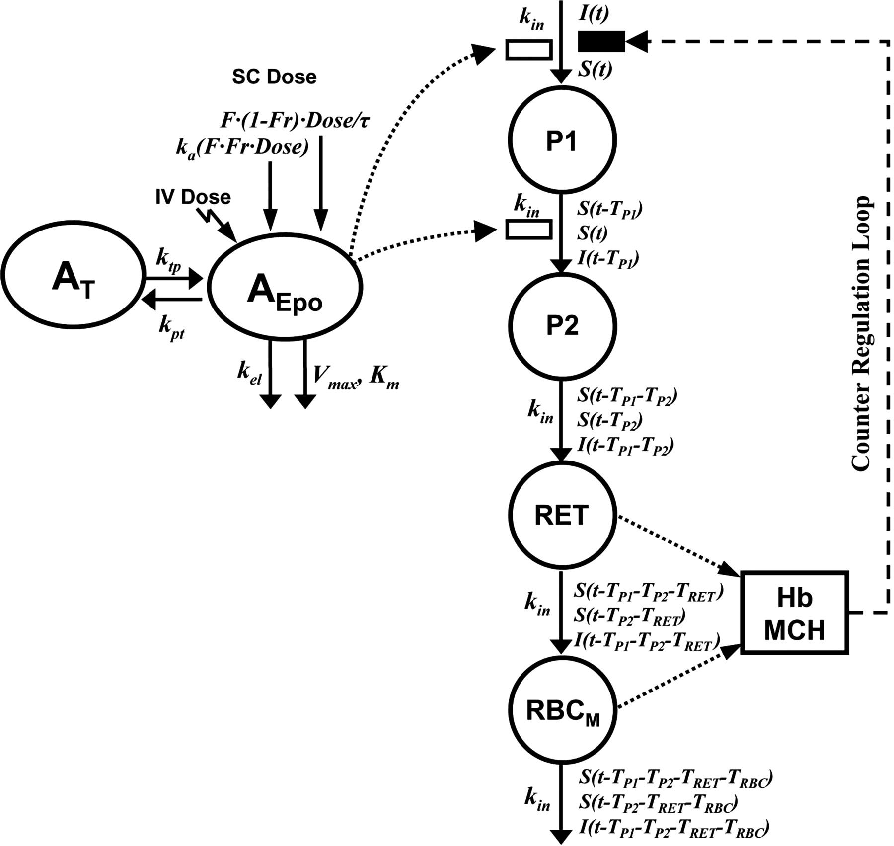 Pharmacokinetic and Pharmacodynamic Modeling of
