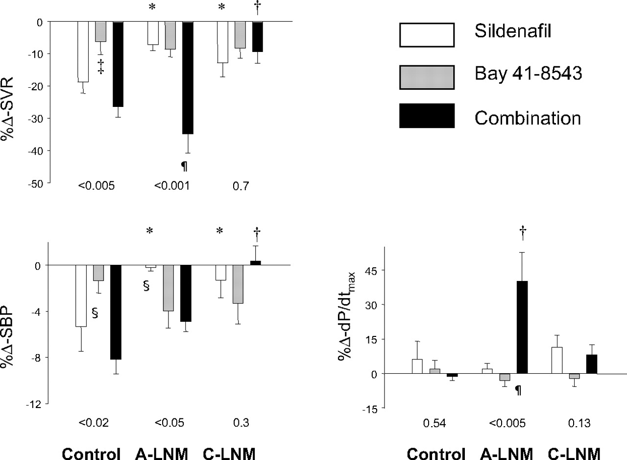 Sustained Soluble Guanylate Cyclase Stimulation Offsets