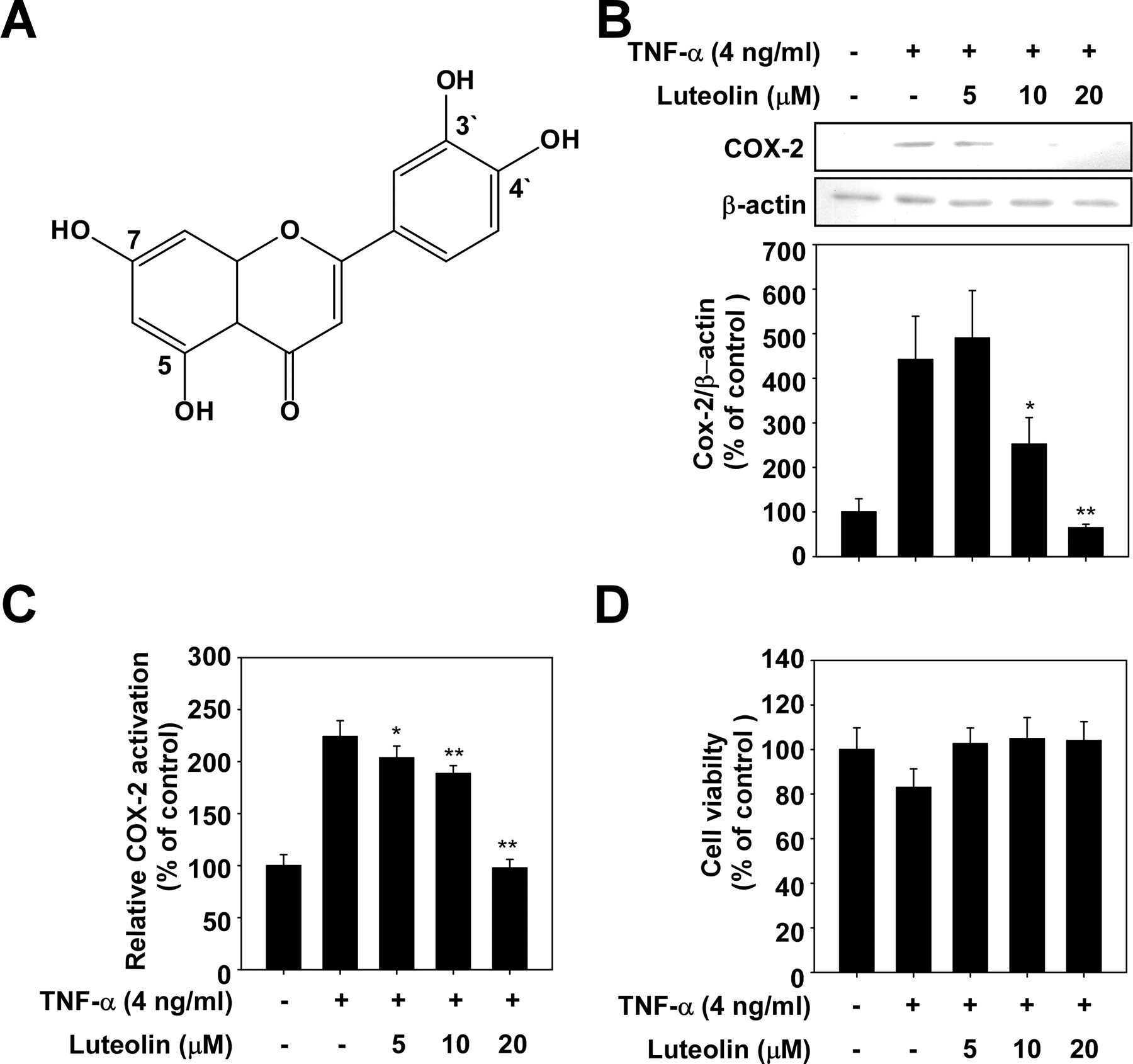 Luteolin, a Novel Natural Inhibitor of Tumor Progression