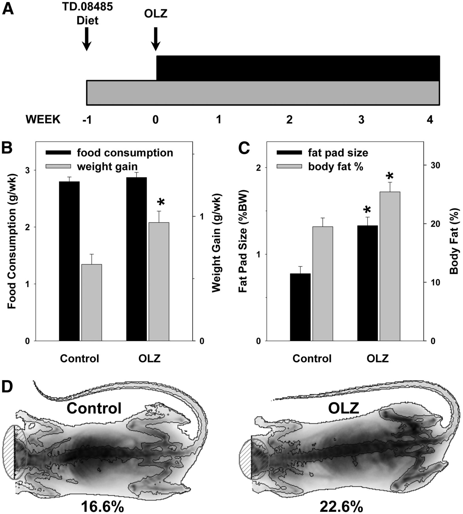 Olanzapine Activates Hepatic Mammalian Target Of Rapamycin New Mechanistic Insight Into