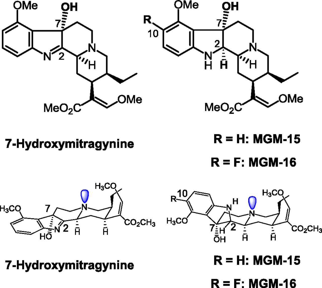 Orally Active Opioid μ/δ Dual Agonist MGM-16, a Derivative