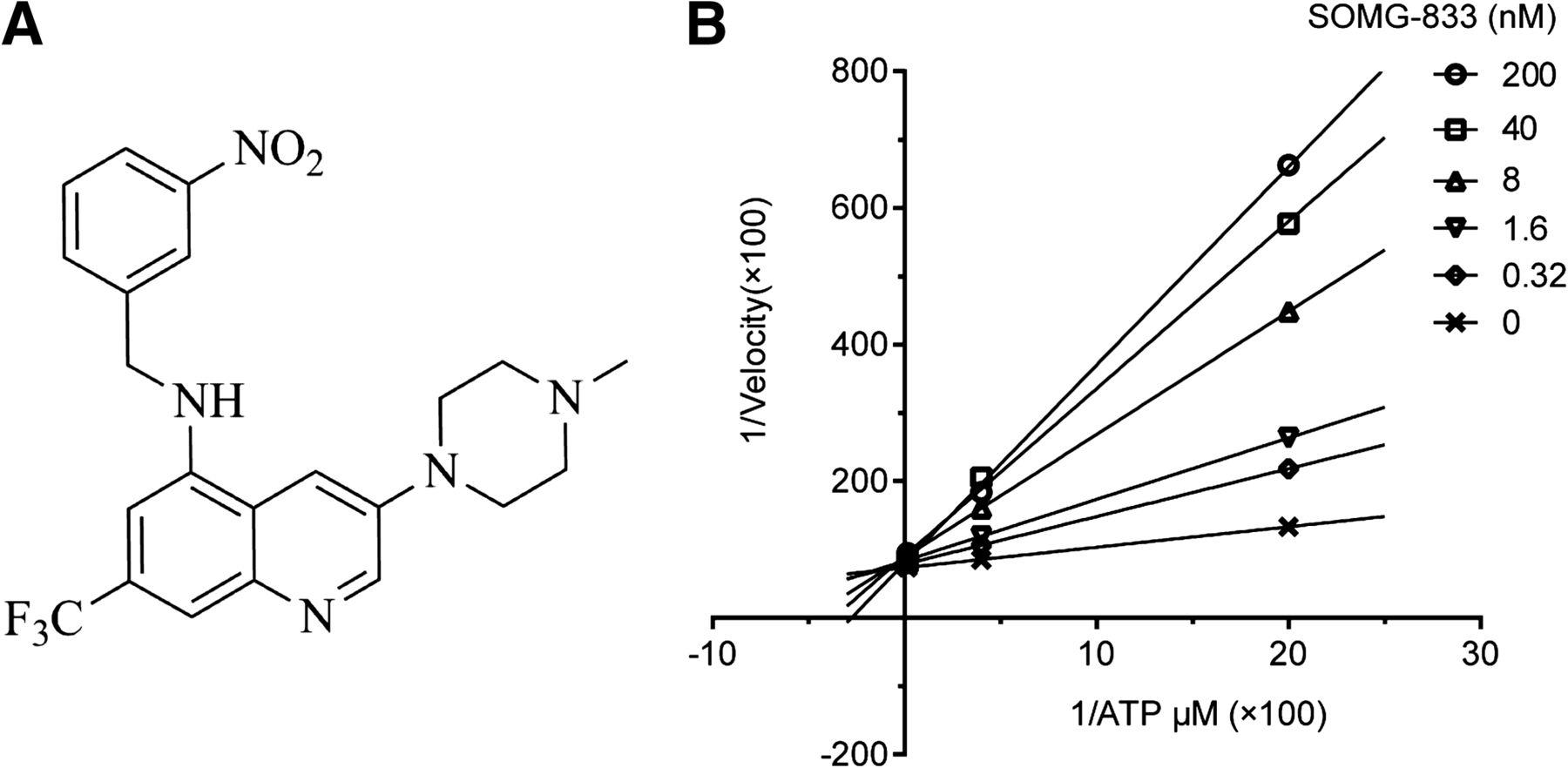 SOMG-833, a Novel Selective c-MET Inhibitor, Blocks c-MET