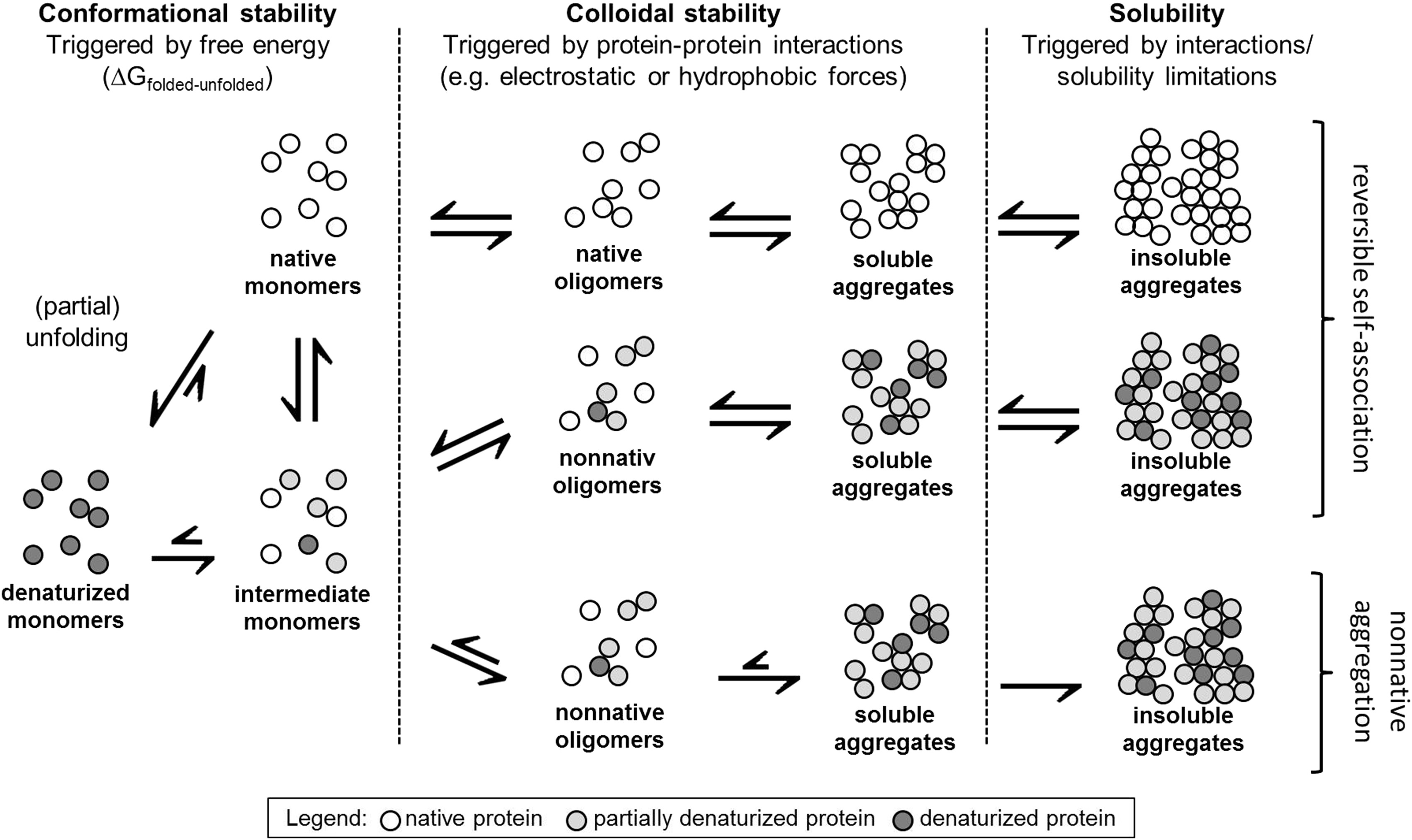 Predictive Screening Tools Used In High Concentration Protein Formulation Development