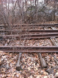 Abandoned Railroad Tracks In Dunmore PA Bridging The