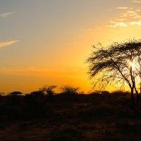 Sunrise-Burao-Somaliland