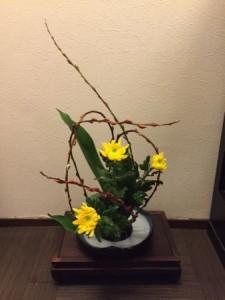 新花菊.JPG