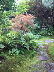 嵐山よしむら 庭2.JPG