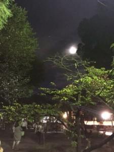 月 平野神社