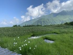 弥陀ヶ原・立山