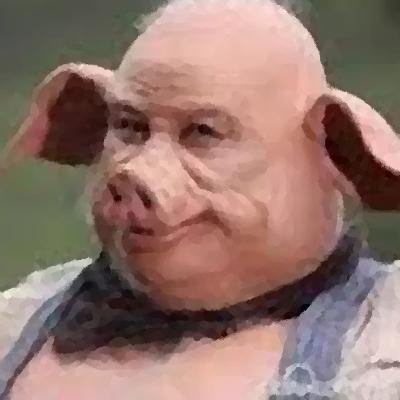 人と豚を組み合わせた胎児が誕生