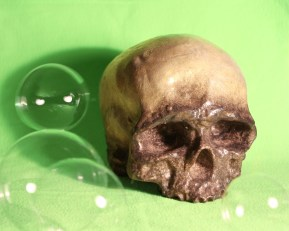 Skull With Bubbles