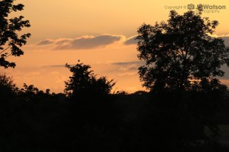Sunset At Staveley Nature reserve