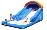Large Backyard Water Slide | JPZ Entertainment, Inc