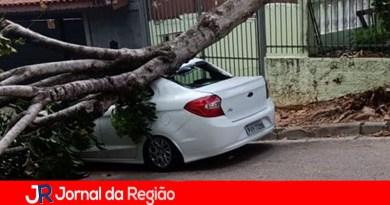 Árvore cai e destrói carro em Jundiaí