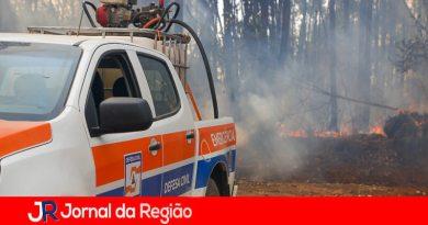 Incêndio na Fazenda Venâncio. (Foto: Divulgação)