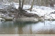 Bank stabilisation, River Erlauf, Winter 2009