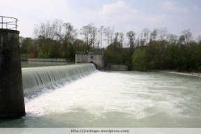 High flow over opened fish-belly weir, River Erlauf, Spring 2009
