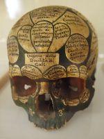 galls-head (1)