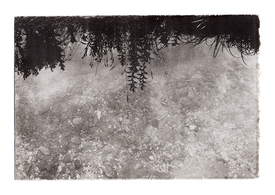 Acid Mine Drainage Print