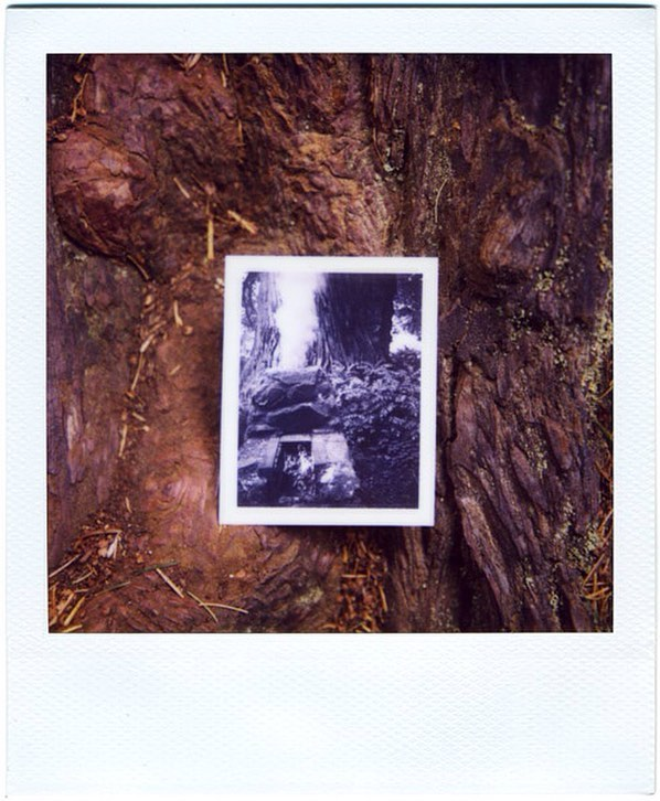 Polaroid of a Polaroid.  California, 2008.