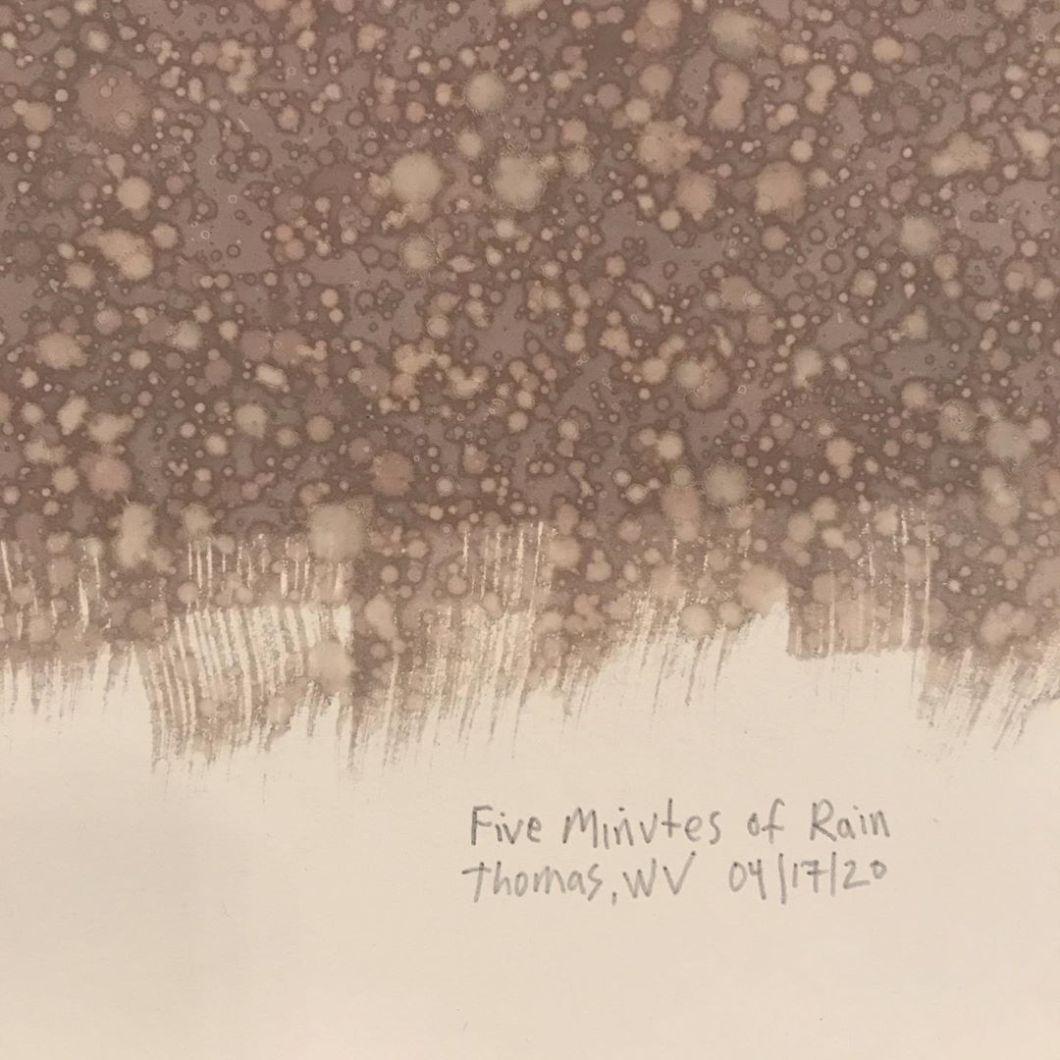 Van Dyke print on Arches Platine.