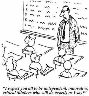 How Do I Facilitate Students Trying to Create Their Own