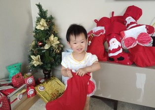 E with the Christmas stocking