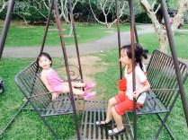 Frangipani swings