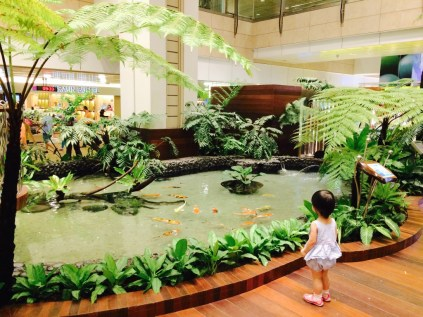 Koi pond at Terminal 2