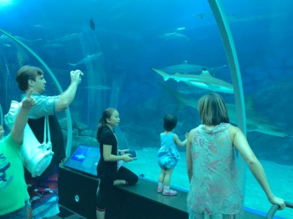 SJL and Little E in the SEA Aquarium tunnel