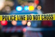 News24.com   Man shot dead at Joburg shopping centre